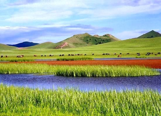 中国的66号公路——草原天路